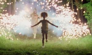 Les bêtes du sud sauvage, de Benh Zeitlin, 2012.  Caméra d'or au Festival de Cannes 2012. Grand prix du jury au Festival de Sundance 2012.