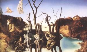 Salvator Dali, Cygnes reflétant des éléphants, 1937