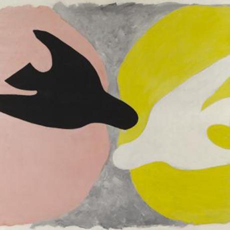 L'oiseau noir et l'oiseau blanc, Braque