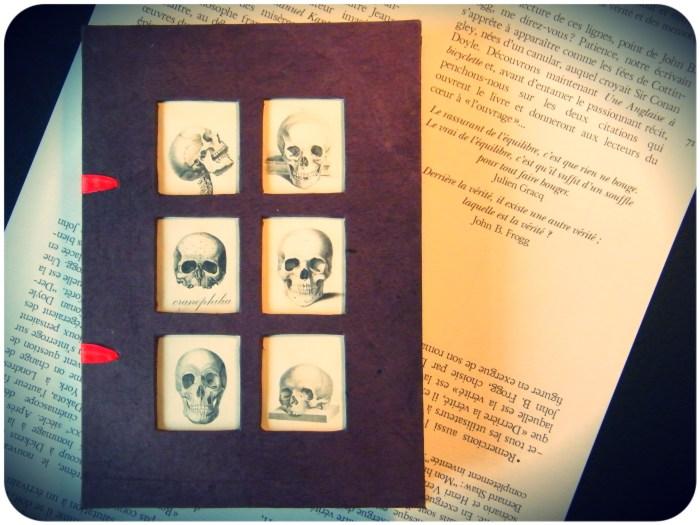 « Le Collectionneur de Providence ou Petit Traité de crânophilie » d'Éric Poindron, où l'on retrouve les aventures de John B. Frogg (Les Venterniers, 2013)