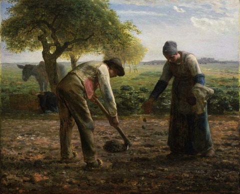 Les Planteurs de pommes de terre, Jean-François Millet