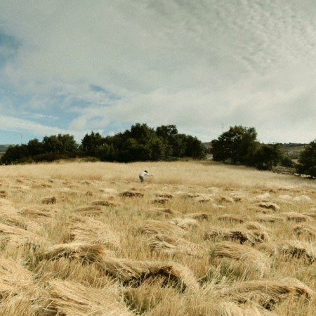 paysage_vat[1]