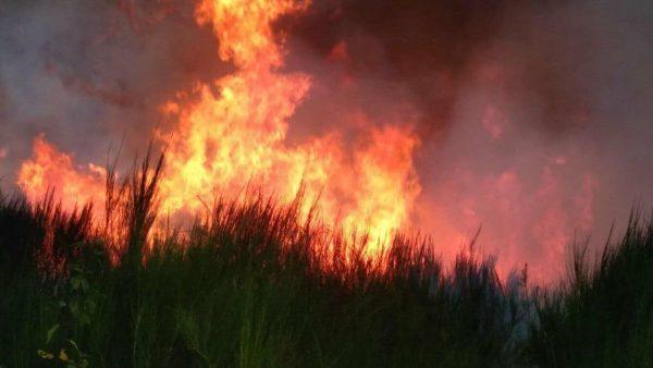 Incendie en Haute-Vienne. Septembre 2019.